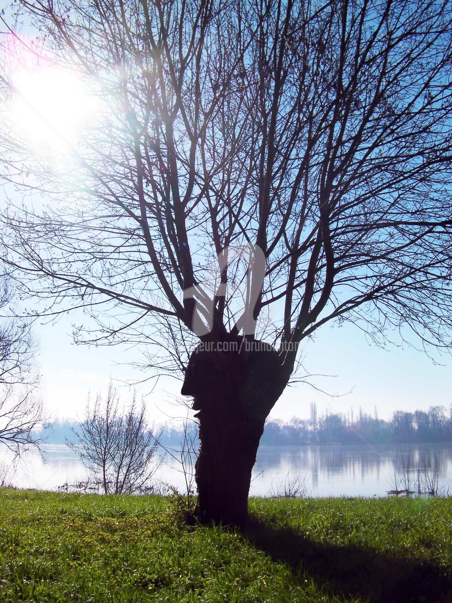 Bruno Antony-Thouret (bruno antony) - j'ai parlé à un deuxième arbre aujourd'hui