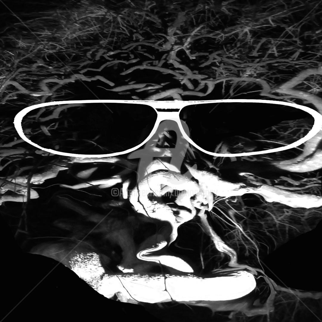 Bruno Antony-Thouret (bruno antony) - le guyotier aime le rock