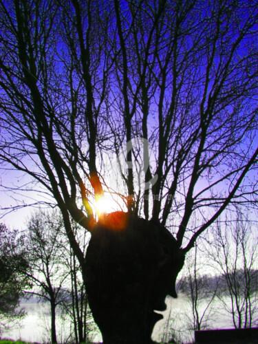 j'ai parlé à un arbre