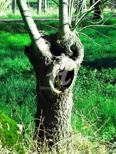 J'ai parlé à un arbre le 8 mars 2015