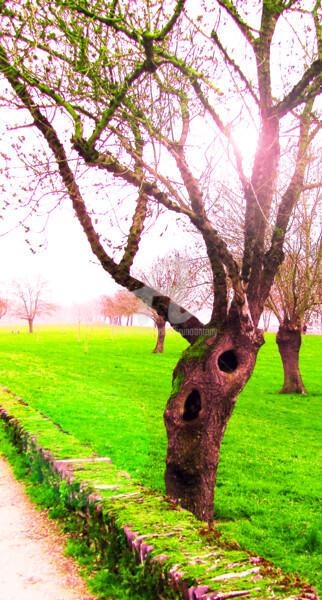 Un arbre auto stoppeur