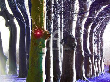 La compagnie des arbres